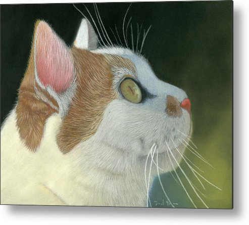 Cat Metal Print featuring the pastel Cat Portrait Pastel Painting by Dave Nevue