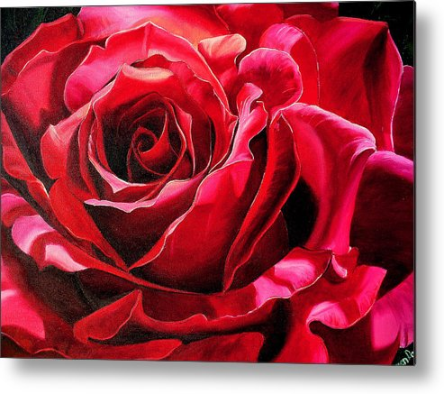 Rose Painting Metal Print featuring the painting Labelle Rose    by Karin Dawn Kelshall- Best
