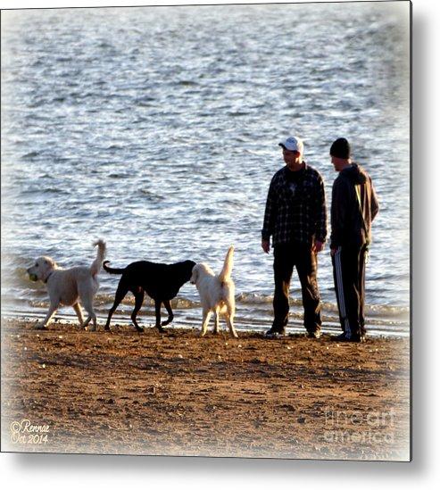 Lake Metal Print featuring the photograph Delta Lake Beach by Rennae Christman