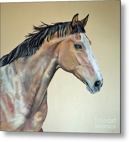 Veterinarian Metal Print featuring the pastel Veterinarian's Warm Blood Horse by Ann Marie Chaffin