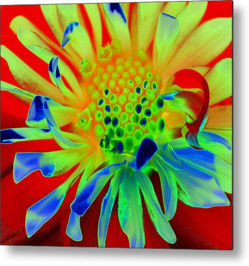 Diane Berry Metal Print featuring the painting Bright Flower by Diane E Berry
