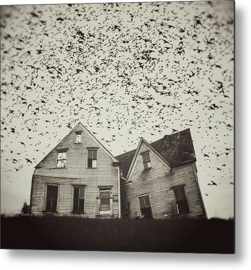 Spooky Metal Print featuring the photograph Home Of Murmuration by Shaunl