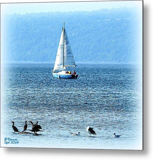 Water Metal Print featuring the photograph A Day To Sail by Rennae Christman