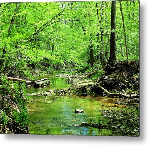 Creek Metal Print featuring the photograph Emerald Creek by Candice Trimble