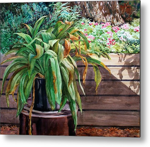 Watercolor Metal Print featuring the painting Sunburnt Kaffir Lily by Peter Sit