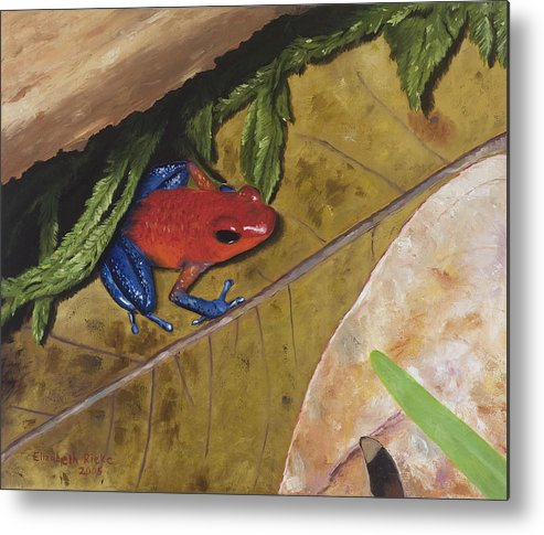 Poison Dart Frog Metal Print featuring the painting Strawberry Poison Dart Frog by Elizabeth Rieke Hefley