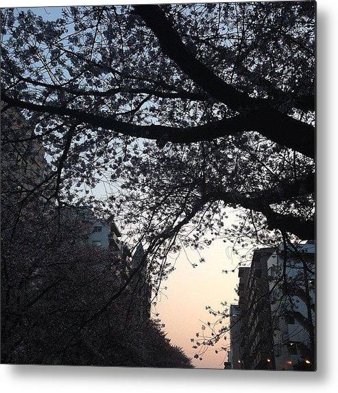 Landscape Metal Print featuring the photograph #landscape by Tokyo Sanpopo
