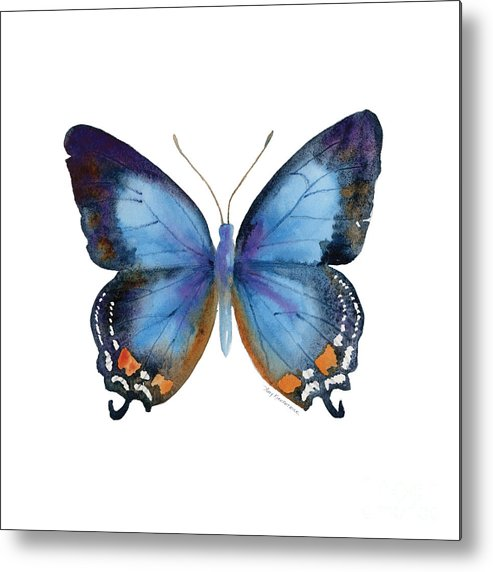 Imperial Blue Butterfly Metal Print featuring the painting 80 Imperial Blue Butterfly by Amy Kirkpatrick