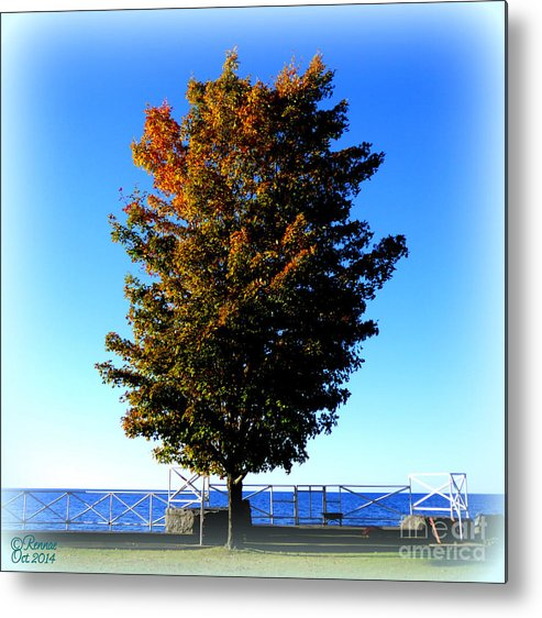 Lake Ontario Metal Print featuring the photograph Along The Lake by Rennae Christman