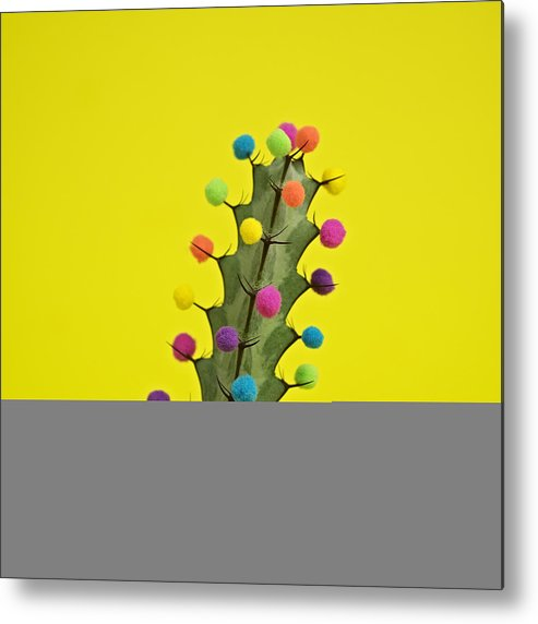 Celebration Metal Print featuring the photograph Cactus Decorated With Puffballs by Juj Winn