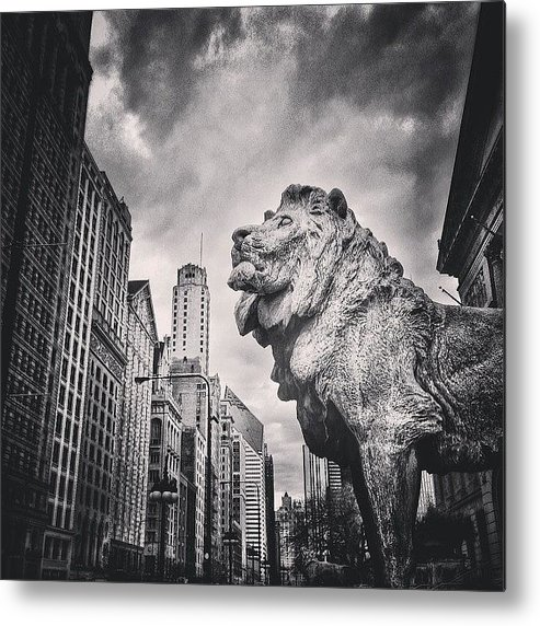 America Metal Print featuring the photograph Art Institute of Chicago Lion Picture by Paul Velgos