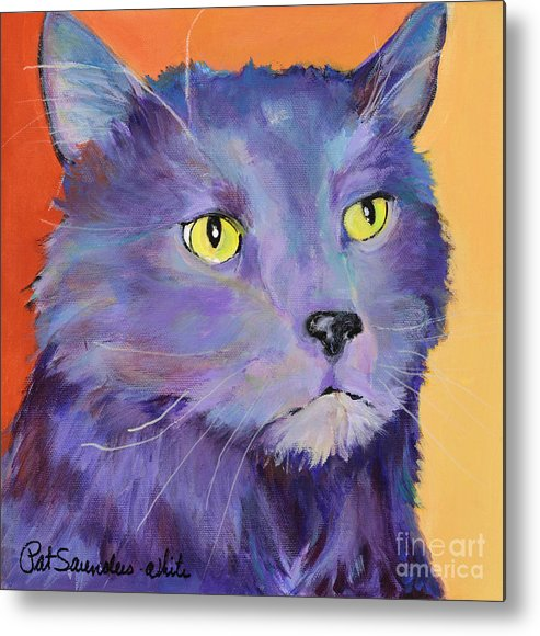 Feline Metal Print featuring the painting Frenchy by Pat Saunders-White
