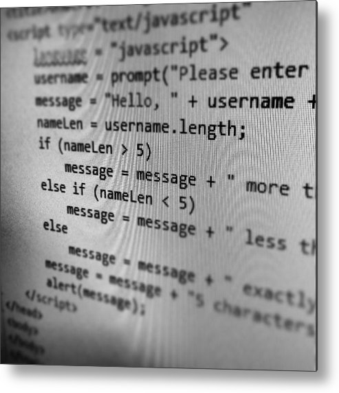 Metal Print featuring the photograph Javascript Boi by Neil Gray