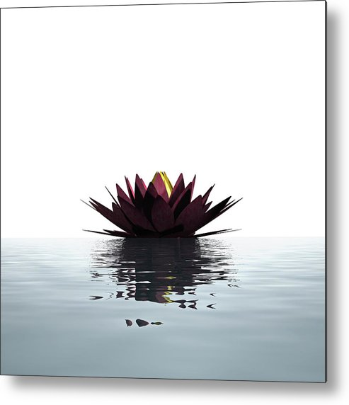White Background Metal Print featuring the photograph Lotus Flower Floating On The Water by Artpartner-images