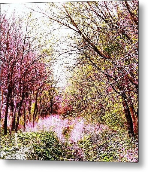 Art Metal Print featuring the photograph #mgmarts #hungary #visionary #forest by Marianna Mills