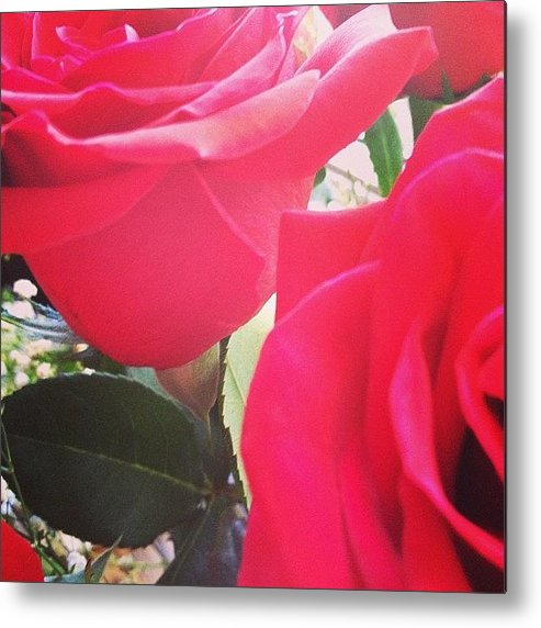 Beautiful Metal Print featuring the photograph #red #rose #roses #flower #nature #new by Amber Campanaro