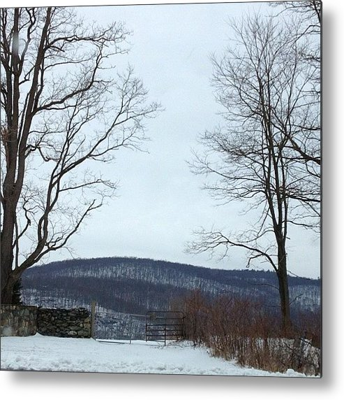Gate Metal Print featuring the photograph The Gate To No Where #gate #nowhere by Amber Campanaro