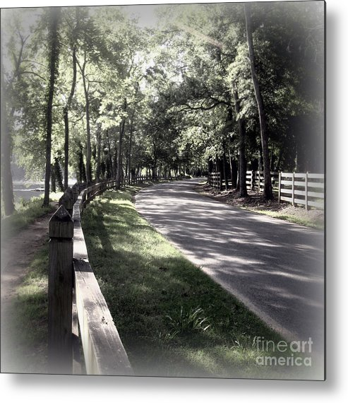Richmond Va Metal Print featuring the photograph In My Dream The Road Less Traveled by Nancy Dole McGuigan