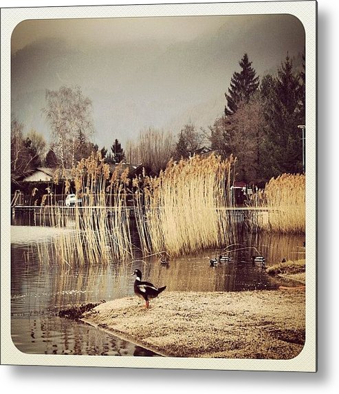 Beautiful Metal Print featuring the photograph A Cloudy Day by Luisa Azzolini