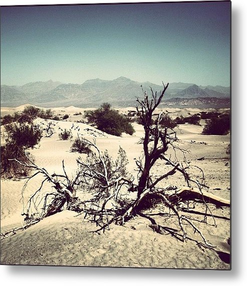 Beautiful Metal Print featuring the photograph Death Valley by Luisa Azzolini