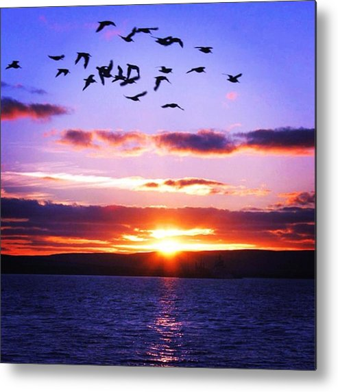 Sunset Metal Print featuring the photograph Sunset by Luisa Azzolini