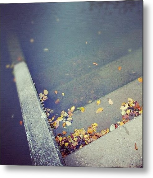 Stair Metal Print featuring the photograph Stairs with autumn foliage leading into water by Matthias Hauser