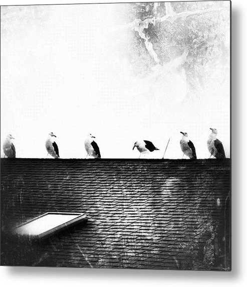 South Jersey Metal Print featuring the photograph there's Always That One Guy ... by Penni D'Aulerio