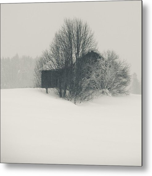 Finland Photographs Metal Print featuring the photograph Winter World #2 by Nikolay Krusser