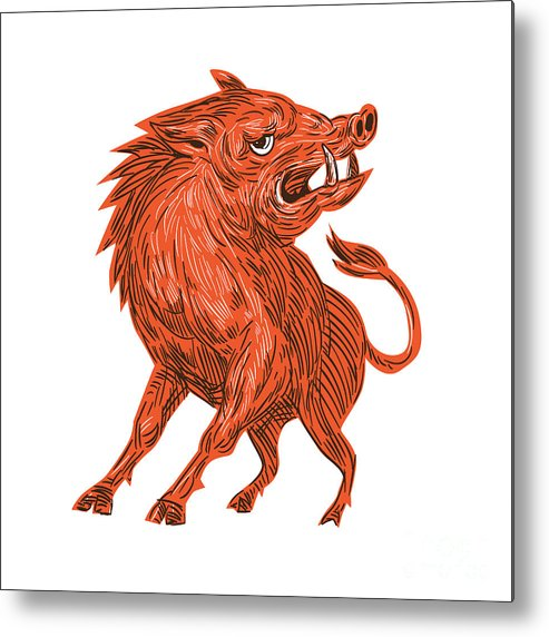 Drawing Metal Print featuring the digital art Angry Razorback Ready To Attack Drawing by Aloysius Patrimonio