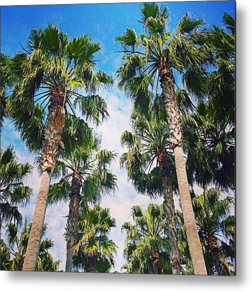 Plant Metal Print featuring the photograph #palm #trees Just Make Me #smile by Shari Warren