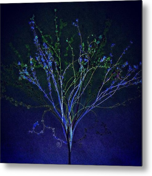 Augustine Metal Print featuring the photograph Since Love Grows Within You by Nick Heap