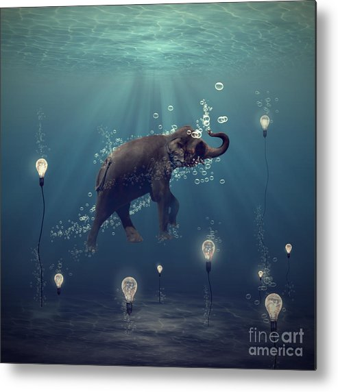 Elephant Metal Print featuring the photograph The dreamer by Martine Roch