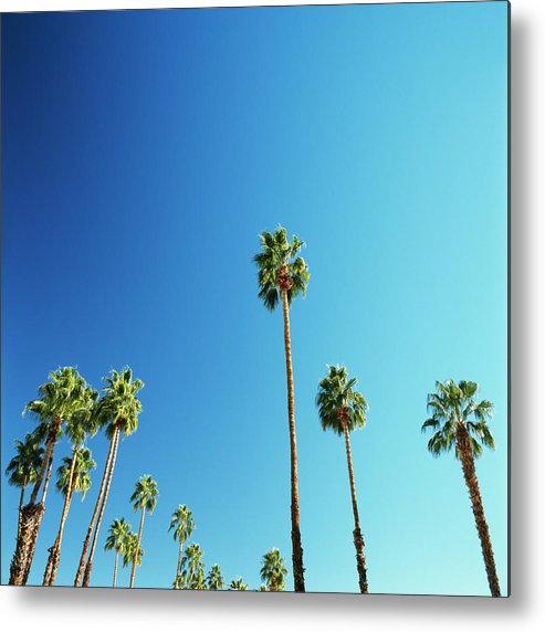 Clear Sky Metal Print featuring the photograph Palm Trees Against Blue Sky by Micha Pawlitzki
