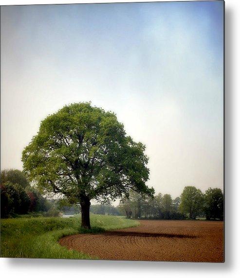 Scenics Metal Print featuring the photograph Garden Of Delights by Bob Van Den Berg Photography