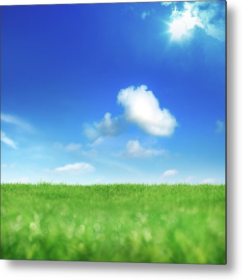Scenics Metal Print featuring the photograph Green And Blue by Imagedepotpro