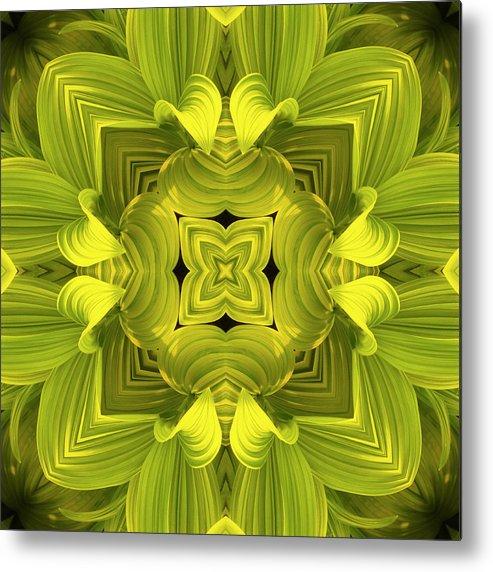 Mandala Metal Print featuring the photograph Leafy Mandala by Steve Satushek
