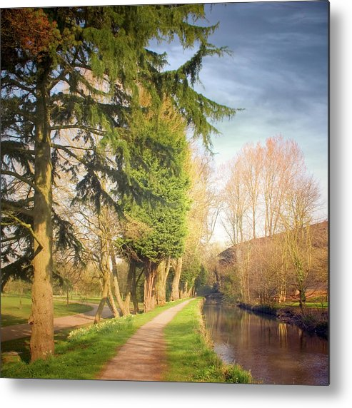 Tranquility Metal Print featuring the photograph Path Besides Canal In Bute Park by Christiana Stawski