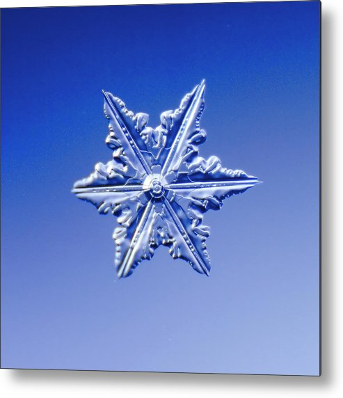 Snow Metal Print featuring the photograph Snowflake On Blue Background by Fwwidall