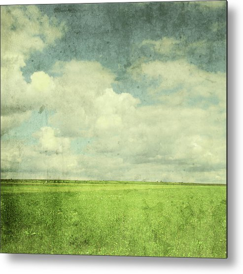 Scenics Metal Print featuring the photograph Vintage Image Of Green Field And Blue by Jasmina007