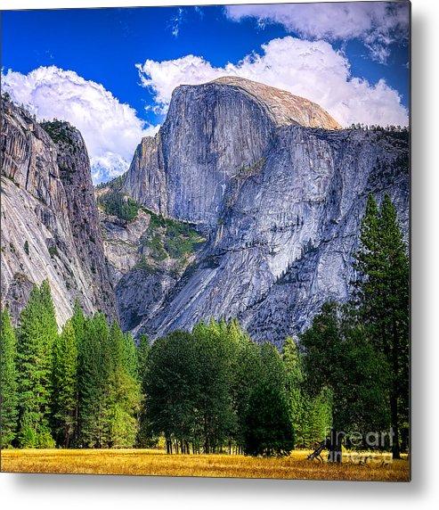 Capitan Metal Print featuring the photograph Yosemite National Park California by Dancestrokes