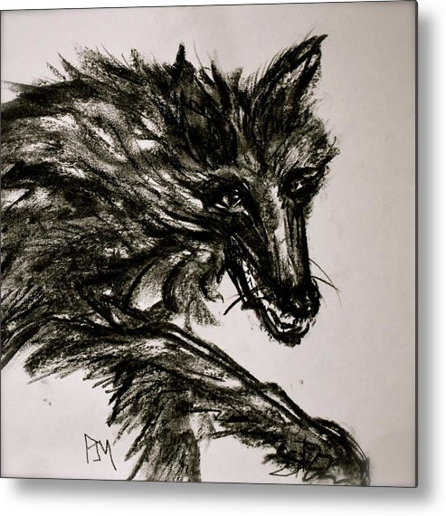 Timberwolf Metal Print featuring the drawing Timberwolf II by Pete Maier