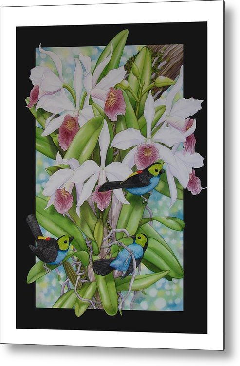 Orchids Metal Print featuring the painting Laelia Purpurata by Darren James Sturrock