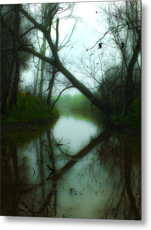 Tree Metal Print featuring the photograph If A Tree Falls by Michael DeBlanc
