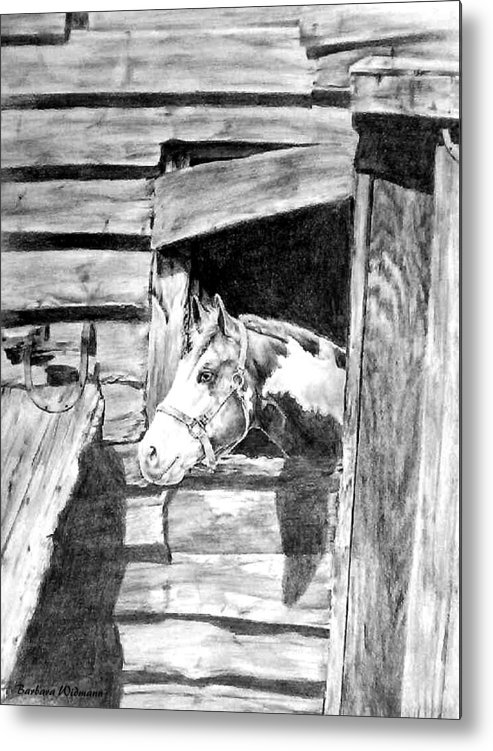 Horses Metal Print featuring the drawing Strawberry by Barbara Widmann