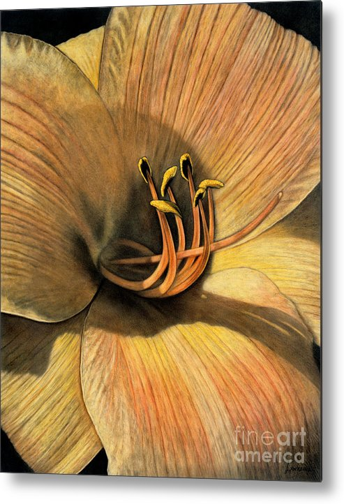 Lawrence Metal Print featuring the painting Day Lily by Lawrence Supino