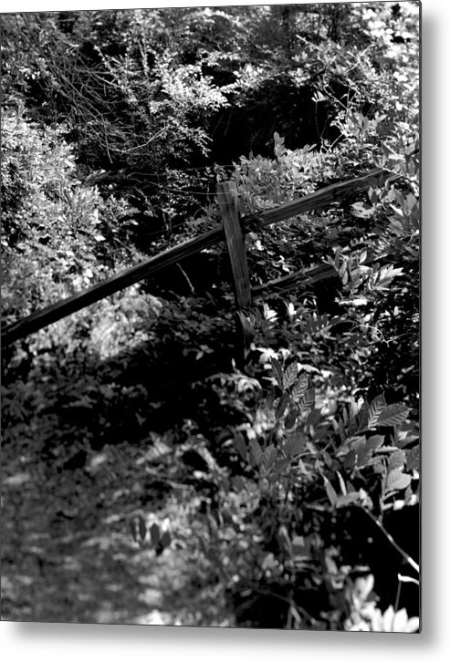 Woods Metal Print featuring the photograph The Fence by Ayesha Lakes