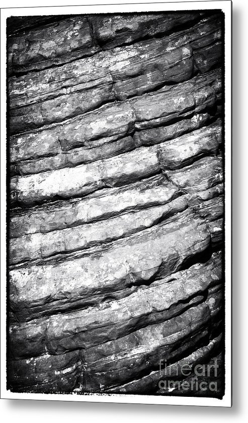 Years In The Making Metal Print featuring the photograph Years In The Making by John Rizzuto