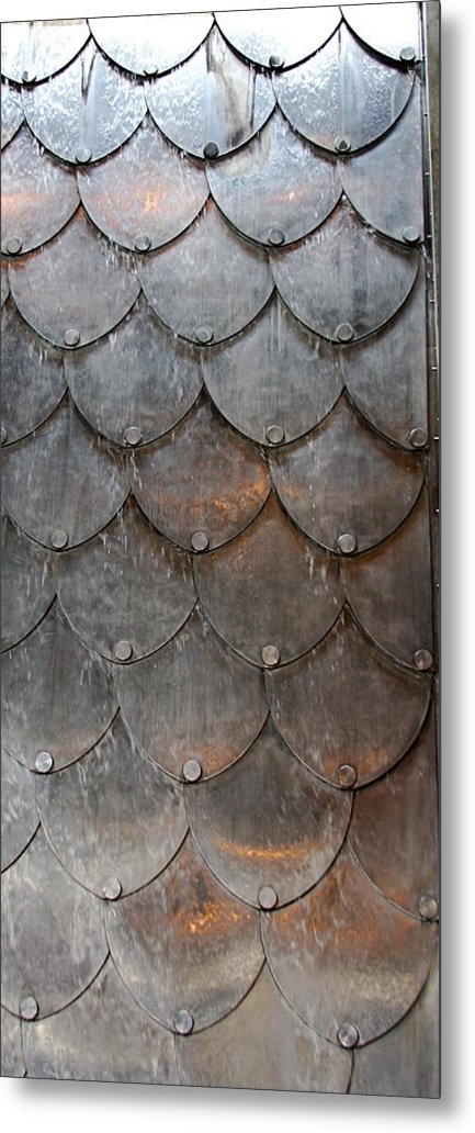 Shapes Metal Print featuring the photograph Fish Scales by Kenna Westerman