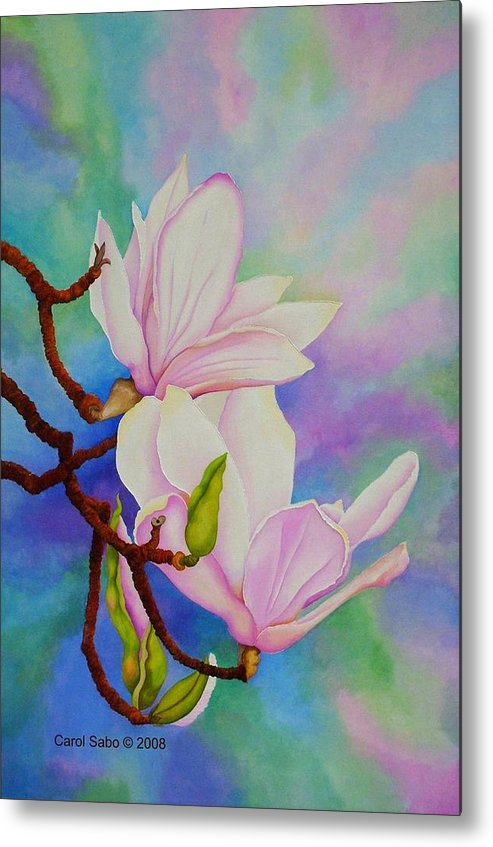 Pastels Metal Print featuring the painting Spring Magnolia by Carol Sabo