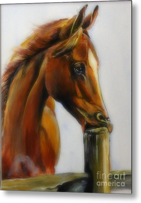 Horse Metal Print featuring the painting Bad Boy by Adele Pfenninger